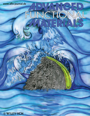 Advanced Functional Materials, 2011