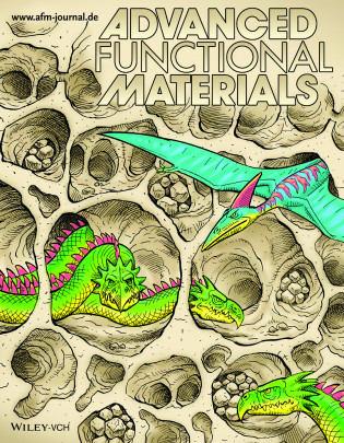 Advanced Functional Materials, 2016