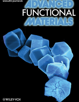 Advanced Functional Materials, 2009